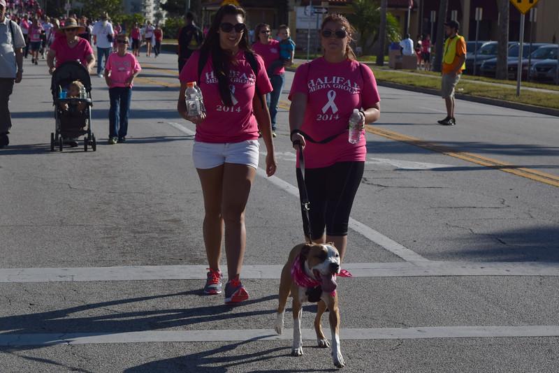 2014 Making Strides Against Breast Cancer in Daytona Beach (252)