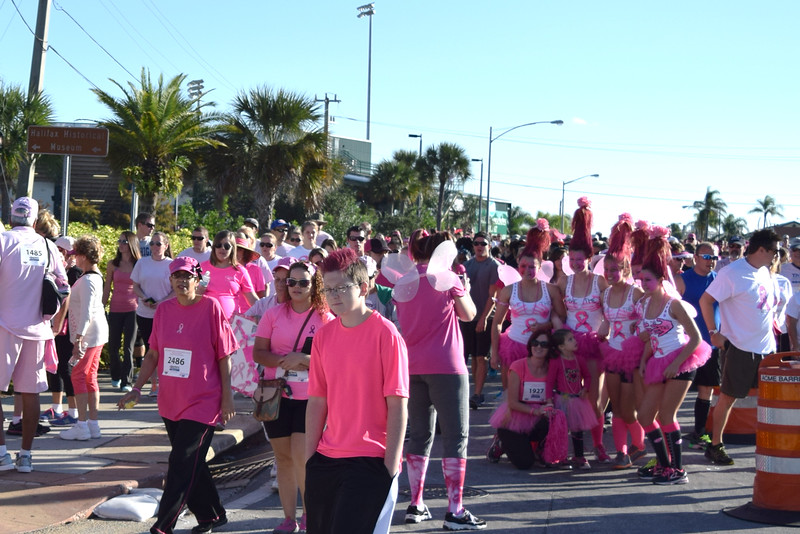 2014 Making Strides Against Breast Cancer in Daytona Beach (175)