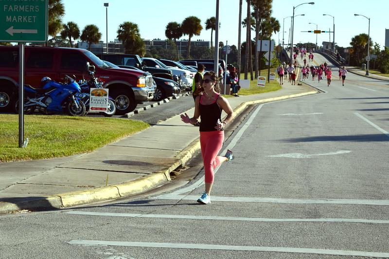 2014 Making Strides Against Breast Cancer in Daytona Beach (212)