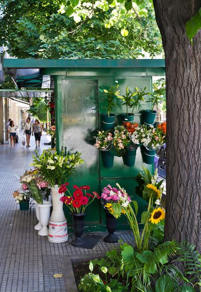 Buenos Aires Flower Vendor