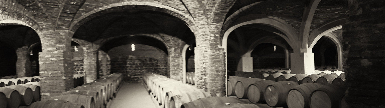 Santa Rita Winery wine cellar, Santiago, Chile