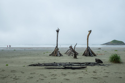 Hiking in the fog and amongst driftwood sculptures on Long Beach