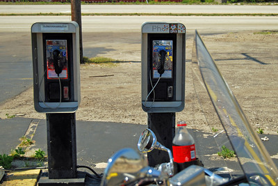 1011 Pay Phone Dinosaurs in Florida in 2011