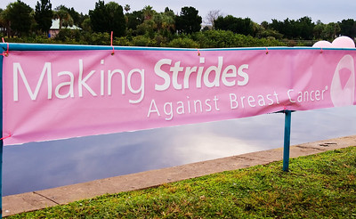 55: Making Strides Against Breast Cancer Daytona Beach 2008 Events