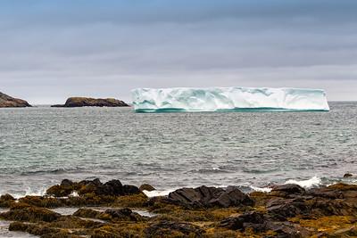 Iceberg offshore Ferryland