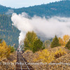 Remnant of a Logging Railroad