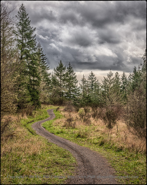 Chip Ross Park trail, Corvallis