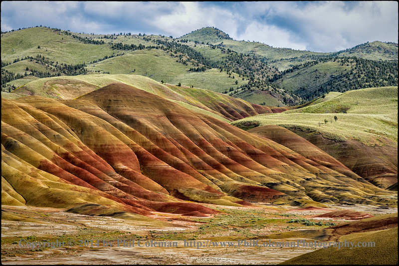 Springtime in the Painted Hills
