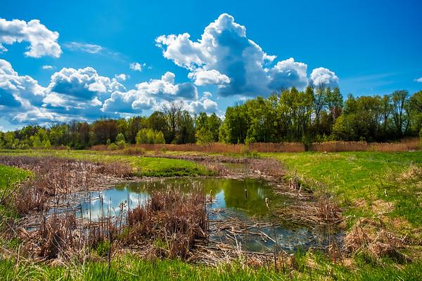 Wandering-Ponds-9056