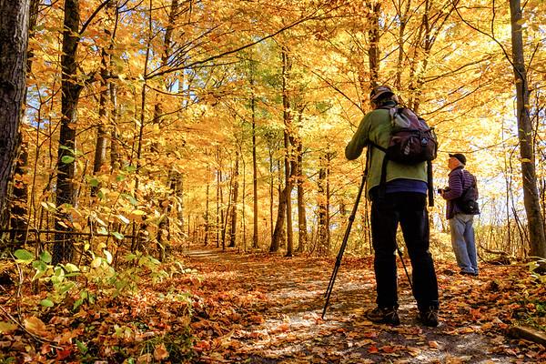 Photoboyz in awe of nature's fall display