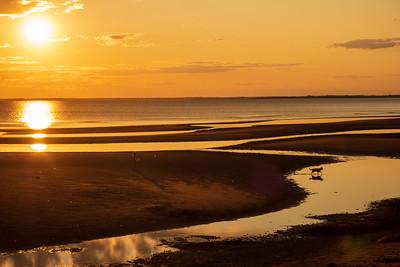 Late day golden light on the shore