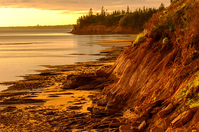 The shore looking spectacular and glowing in late day light