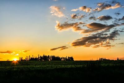 Sunrise over green grain fields on Prince Edward Island