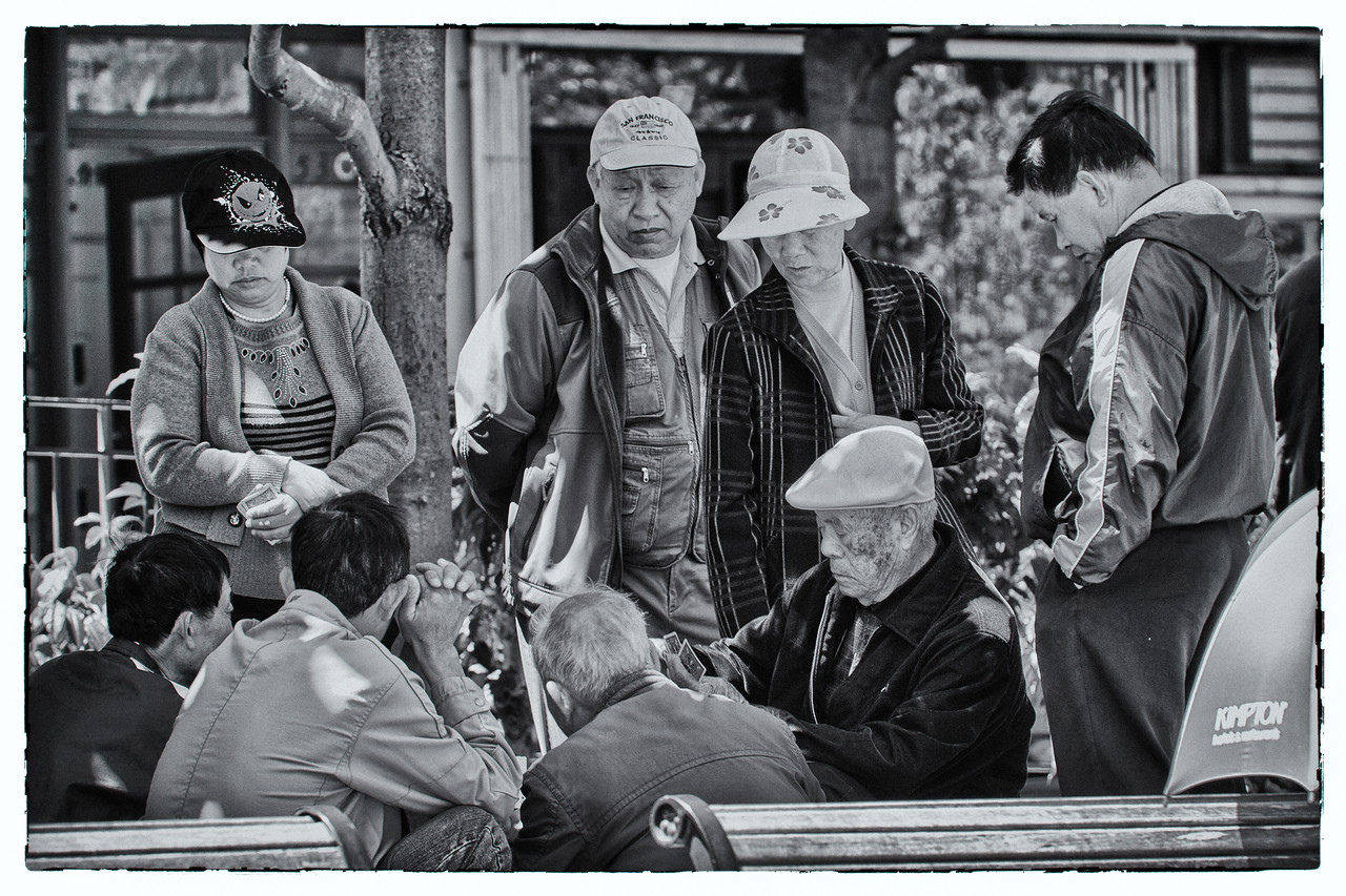Card Game in Park