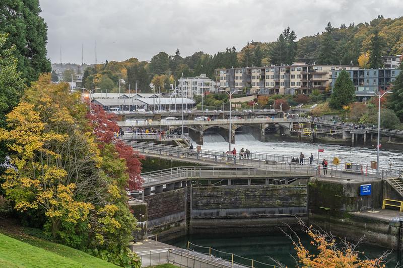 Ballard Locks from Botanical Garden
