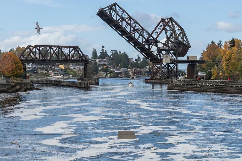 Salmon Bay Bridge of BNSF railway