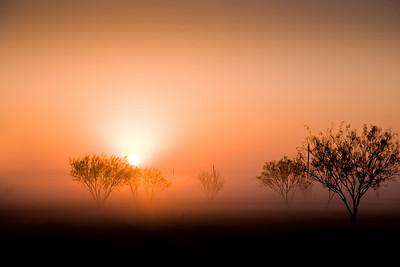 Fog West Texas