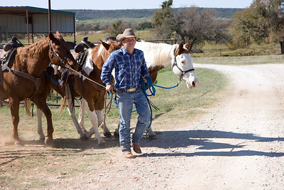 Horse barn & trailride, Wildcatter Ranch Resort & Spa-2