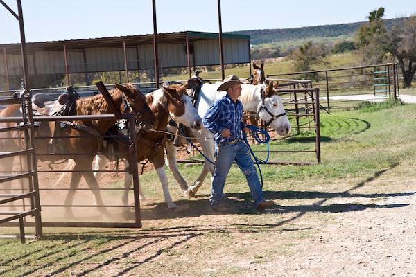 Horse barn & trailride, Wildcatter Ranch Resort & Spa