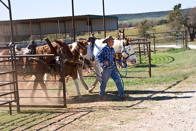 Horse barn & trailride, Wildcatter Ranch Resort & Spa