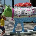 Vacas nas ruas do Rio - Foto Alexandre Vidal (98)