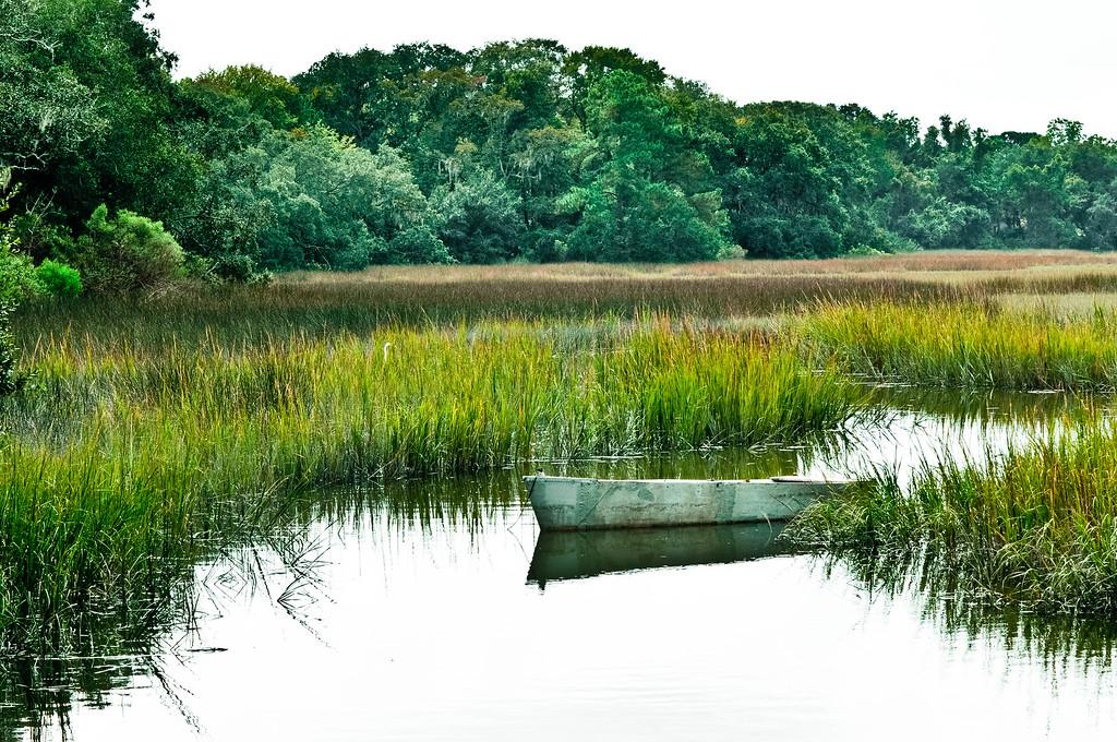 Boat in marsh