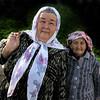 Old friends, Samarkand