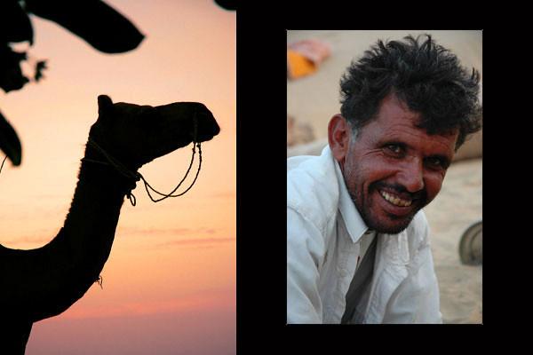 Leader of the Pack<br /> The Thar Desert, Rajasthan
