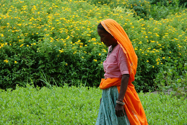 Lady Passing<br /> Amer, Rajasthan