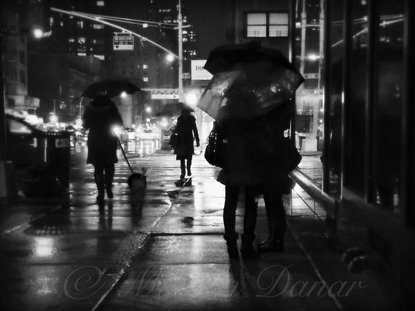 The Softness of Rain
