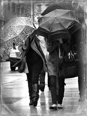 Three Umbrellas - Rainy Day