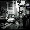 Umbrella Days - The City