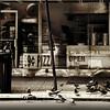 99 cent Pizza - New York City Street Scene