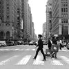Enroute: The Crossing - New York City Street Scene