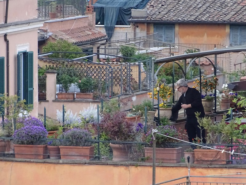 tending the rooftop gardens