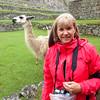 Debi at Machu Picchu