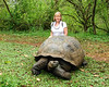 Debi standing behind a Giant Tortoise in the Galapagos Islands.