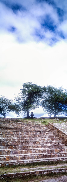 under the tree - Monte Alban - Mexico