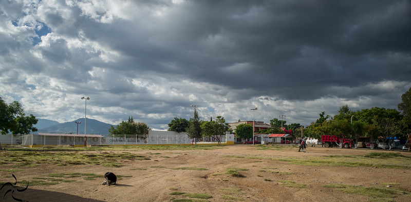 Dog under cloudy sky - Cuilapan de Guerrero - Mexico
