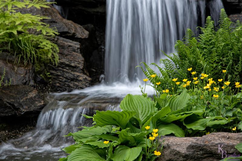 DSC_2703 by a waterfall