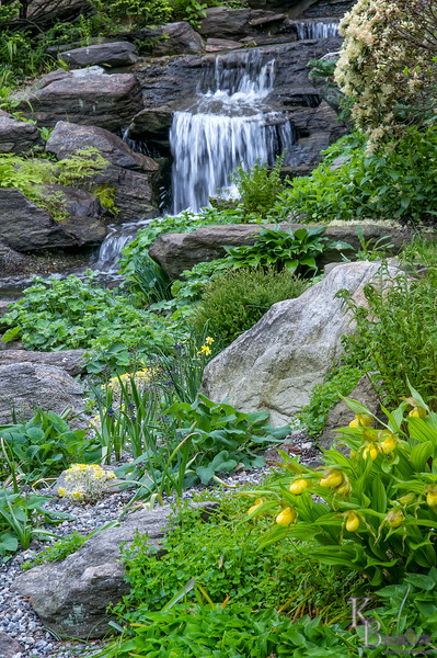 DSC_4494 waterfalll at the rock gardens