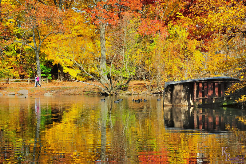 fall comes to Clove lakes