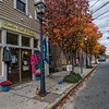 Only in a quaint little town like this one in Rhode Island would  I run across a business that uses a tree to display it wares on.
