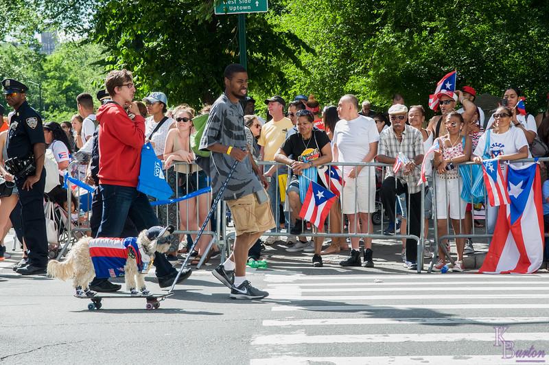 DSC_8422 Puerto Rican Day Parade