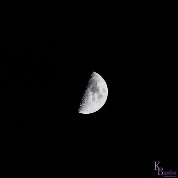 DSC_4631 half moon