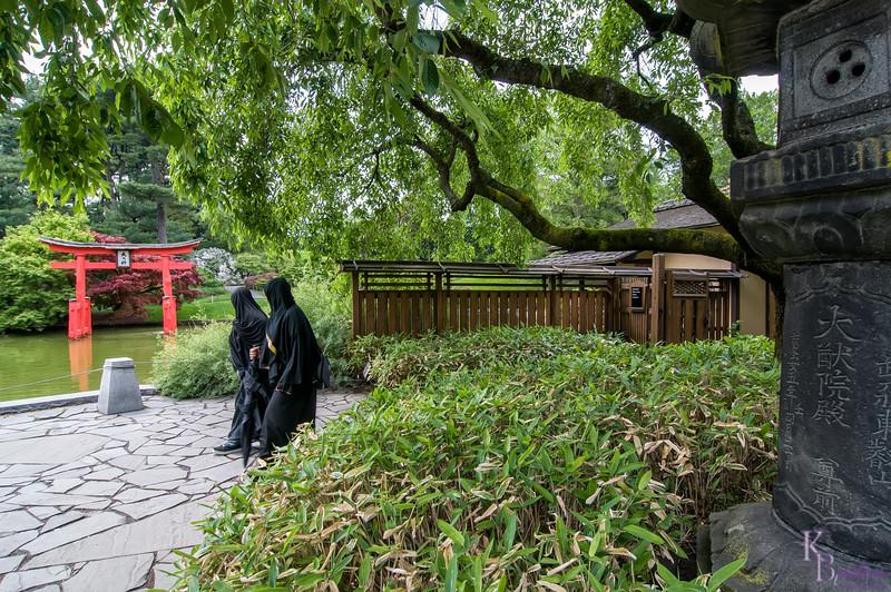DSC_6062 scenes from the Japenese gardens