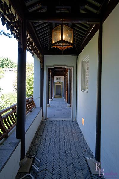 DSC_7065 Chinese gardens_DxO