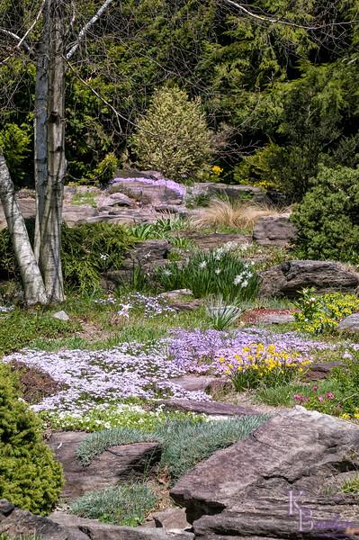 DSC_1885 spring scene at the botanical gardens