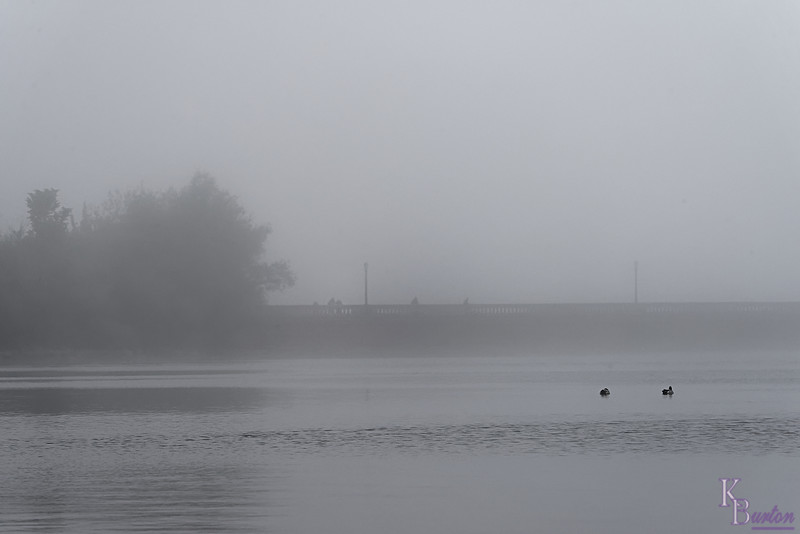 DSC_6939 Silver Lakes in the fog_DxO