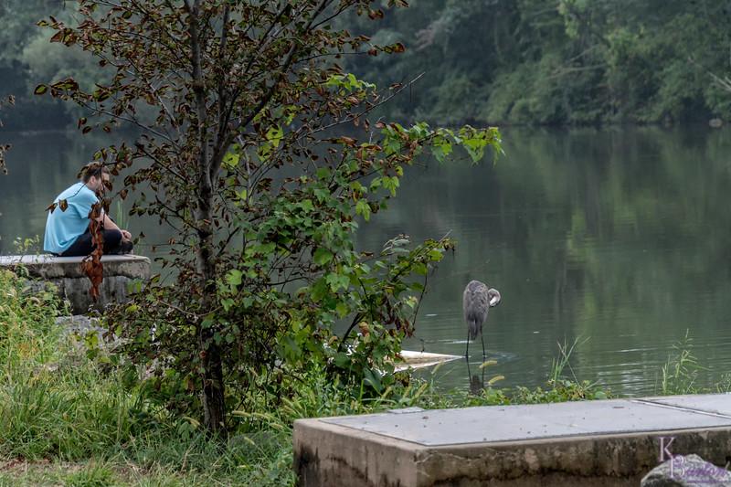 DSC_0854 summer scene at Clove Lakes